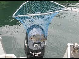 Keuka Lake Fishing With Justin Winnie And Crew Youtube