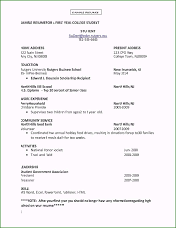 Amazing Resume Examples For First Time Job With No