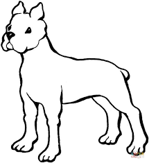Boxer Dog Coloring Pages Boxer Coloring Page Free Printable Coloring