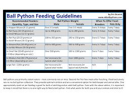Ball Python Morph Chart Ball Python Feeding Guidelines
