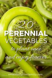 with the exception of asparagus rhubarb and artichokes most gardeners are unaware of the