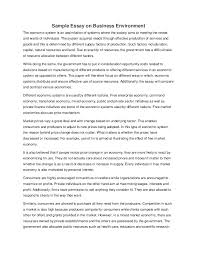 sample essay on business environment