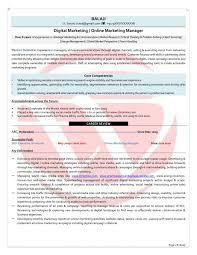 Marketing Resume Format Executive Sample Doc Mid Lev Peppapp
