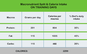 How Were Using Healthkit For Tracking Calories And Macros