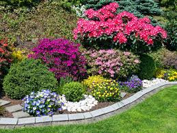 Small Picture Choosing a colour scheme for your garden Saga