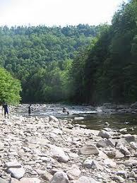 Loyalsock Creek Hatch Chart 9 Best My Home Images Williamsport Pennsylvania Outdoor
