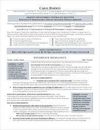 Resume Templates Executive ExecutiveLevel Information Technology Resume Resume Examples 11
