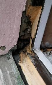 splice new timber in window repairs