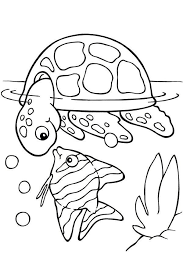 Make them happy with these printable coloring pages and let them show how artful and creative they. Prek Turtle Coloring Page Turtle Coloring Pages Chadwick Abimillepattes Com