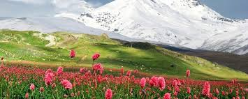 Risultati immagini per armenia paesaggi