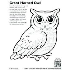Barn Owl Coloring Page Pretty Owl To Color Coloring Pages Barn Owl
