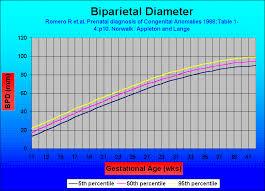 Bpd Chart Week By Week Fetal Head Measurements