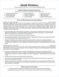 Bank Teller Resume Extraordinary Resume Samples For Bank Teller Resume For Bank Teller Bank Teller