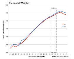 Placenta Growth Chart Placenta Development Embryology