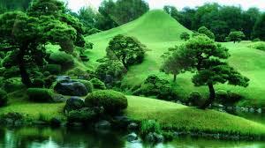 Resultado de imagem para paisagem zen