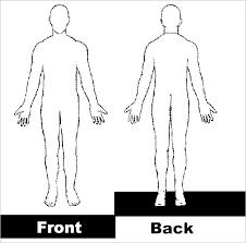 18 Body Outline Templates Pdf Doc Free Premium Templates