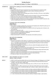 Data Modeler Resume Sample Quantitative Modeler Resume Samples Velvet Jobs 12