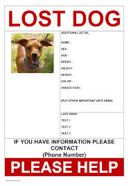 Lost Pet Poster Template Missing Dog Poster 1
