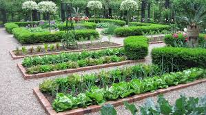 vegetable garden layout and ways to