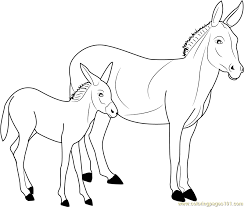Small Picture Donkey Coloring Page Free Donkey Coloring Pages