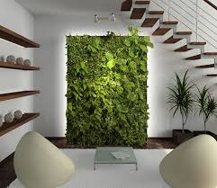office greenery. Office Greenery. Living Wall Greenery