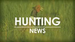 Iowa's <b>rabbit</b>, <b>squirrel</b> season opens Aug. 31 - DNR News Releases