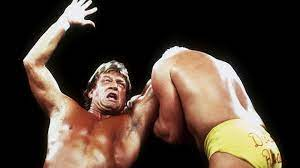 WWE Hall of Fame wrestler Mr Wonderful ...