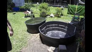 How To Build A Garden Pond Above Ground