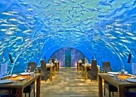 Image result for Ithaa undersea restaurant