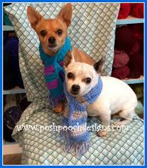 Dog Scarf Pattern Magnificent Decorating