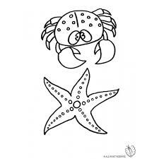 Disegno Di Animali Marini Da Colorare Per Bambini