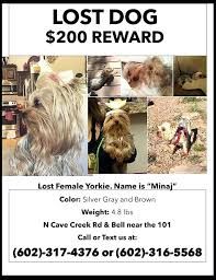 how to make lost dog flyers lost cat poster template pet flyers missing dog archive free flyer