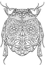 instructive insect colouring pictures simplified coloring pages preschool beetle free printable