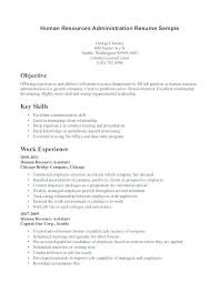 Resume With Little Experience Resume Examples With Little Experience Delectable Problem Solving Synonym Resume