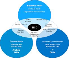 Analytic Skill Part 3 Bicc Skills Roles Responsibilities Sap Analytics