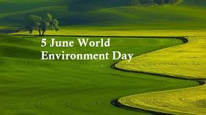 world environment day essay top best collection of essay on world world environment day
