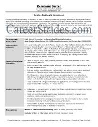 resume career counselor resume