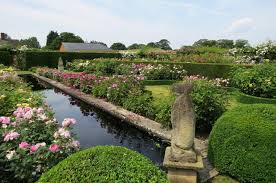 the david austin plant center and gardens located in albrighton england are a