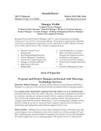 It Infrastructure Manager Resume Foodcity Me