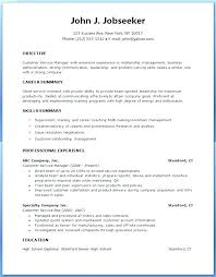 Resume Pdf Delectable Professional Curriculum Vitae Template In 28 Cv Pdf Writing Samples