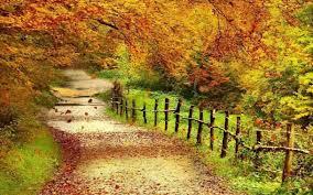 free beautiful scenery hd free