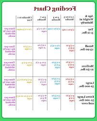 Great Dane Food Chart Petsidi