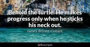 Turtle Quotes Turtle Quotes BrainyQuote 3