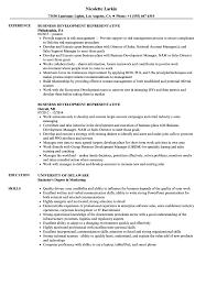 Business Development Resume Sample Business Development Representative Resume Samples Velvet Jobs 27