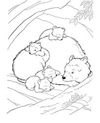 18luxury coloring pages hibernating animals more image ideas