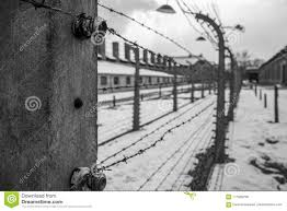 barbed wire fence holocaust. Delighful Holocaust Download Barbed Wire Fences In Auschwitz IIBirkenau Editorial Photo   Image Of Mass On Fence Holocaust W
