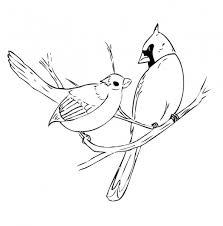 Small Picture 220 best Birds Cardinal images on Pinterest Animals Bird art