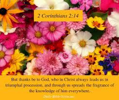 Daily Bible Verse | Grace | 2 Corinthians 2:14 (NASB)