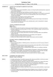 Agency Marketing Manager Resume Samples Velvet Jobs