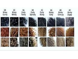 Hair Type Chart Men What Is Your Hair Type And What Does That Exactly Mean
